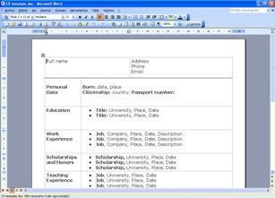 descargar modelo de curriculum vitae para completar